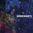 pb_serengeti