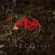 copertina_elisarossi_eco_web