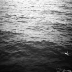Il-Fieno_Riverberi_recensione_music-coast-to-coast